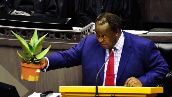 Tito Mboweni's Budget for the Tough Times: Planting the seeds of future economic success
