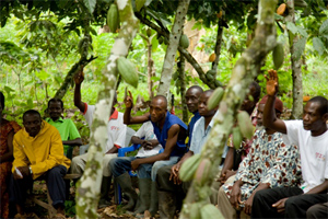 COCOBOD boss commended by local cocoa farmers for his farmer-friendly policies