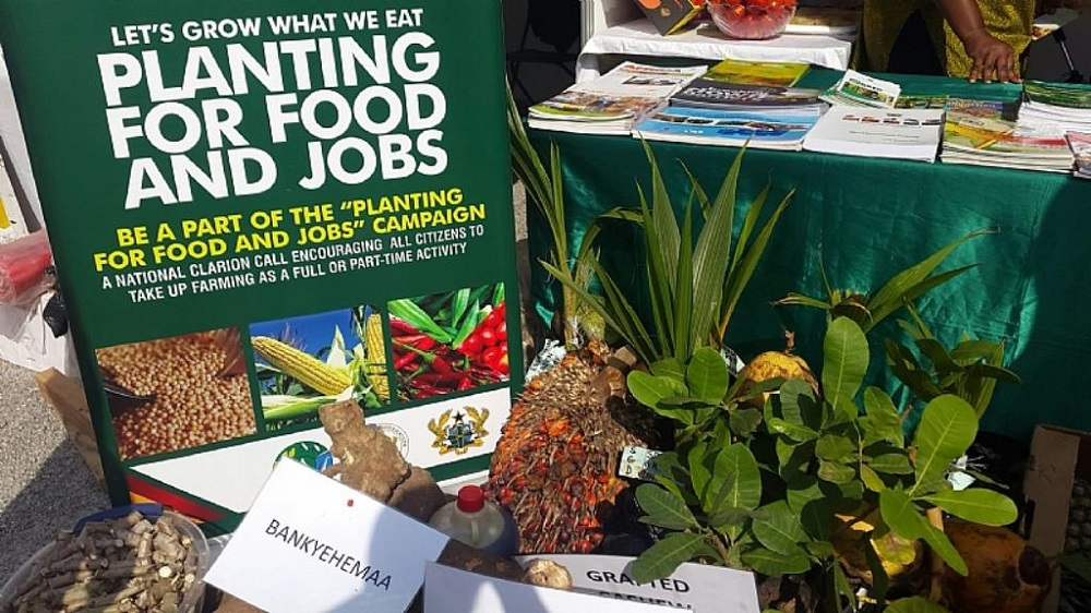 Planting for food and jobs Ghana1